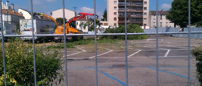 photo destruction arbre gagny 2